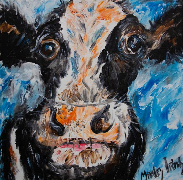 """Marley Irish """"Funny Cow"""" acrylic painting on unframed canvas. Painting measures 40 x 40cm. Price includes nationwide delivery"""